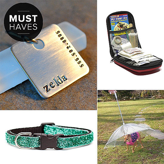 POPSUGAR Pets has got the month of April covered with the perfect must haves for your furry friend, from umbrellas for dogs to fresh Spring cat collars.