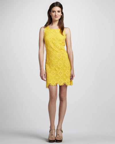 Ali Ro Sleeveless Crocheted Dress