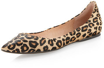 Steven By Steve Madden Eternal Pointed-toe Flat, Leopard Print