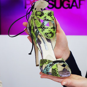 Reptile Accessories For Spring 2013 | Video