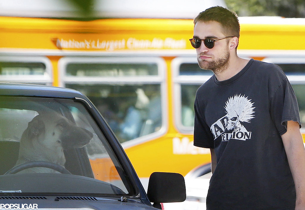 Robert Pattinson spotted a dog in a car.
