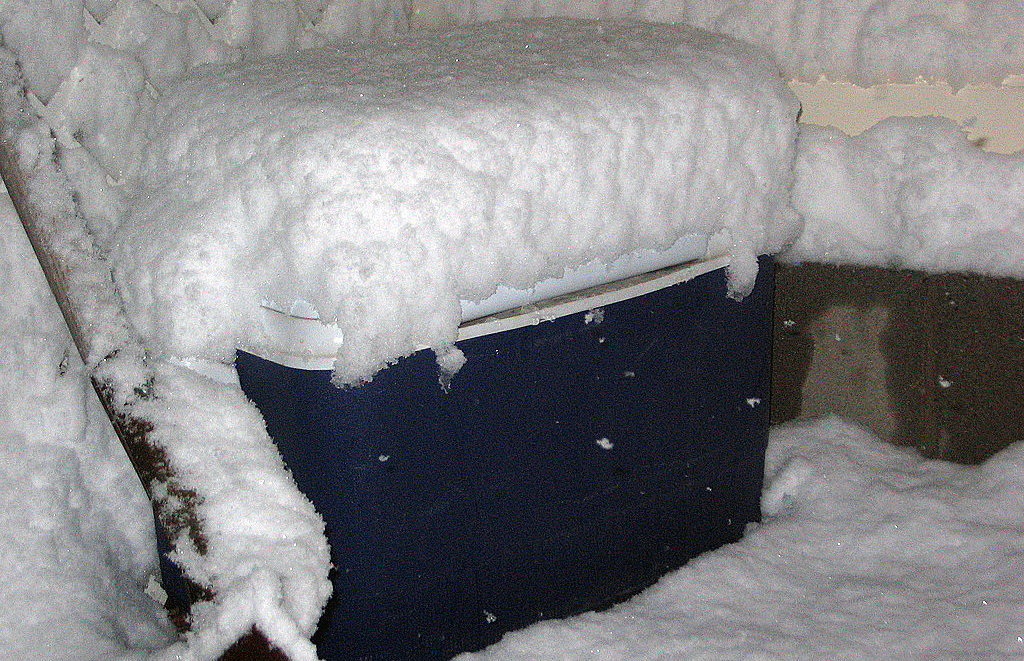 Coolers don't belong in freezing temperatures.