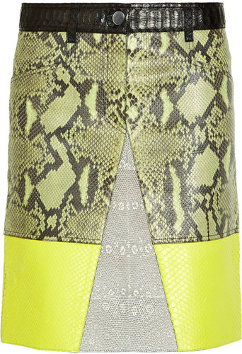 Proenza Schouler Python, lizard and leather A-line skirt