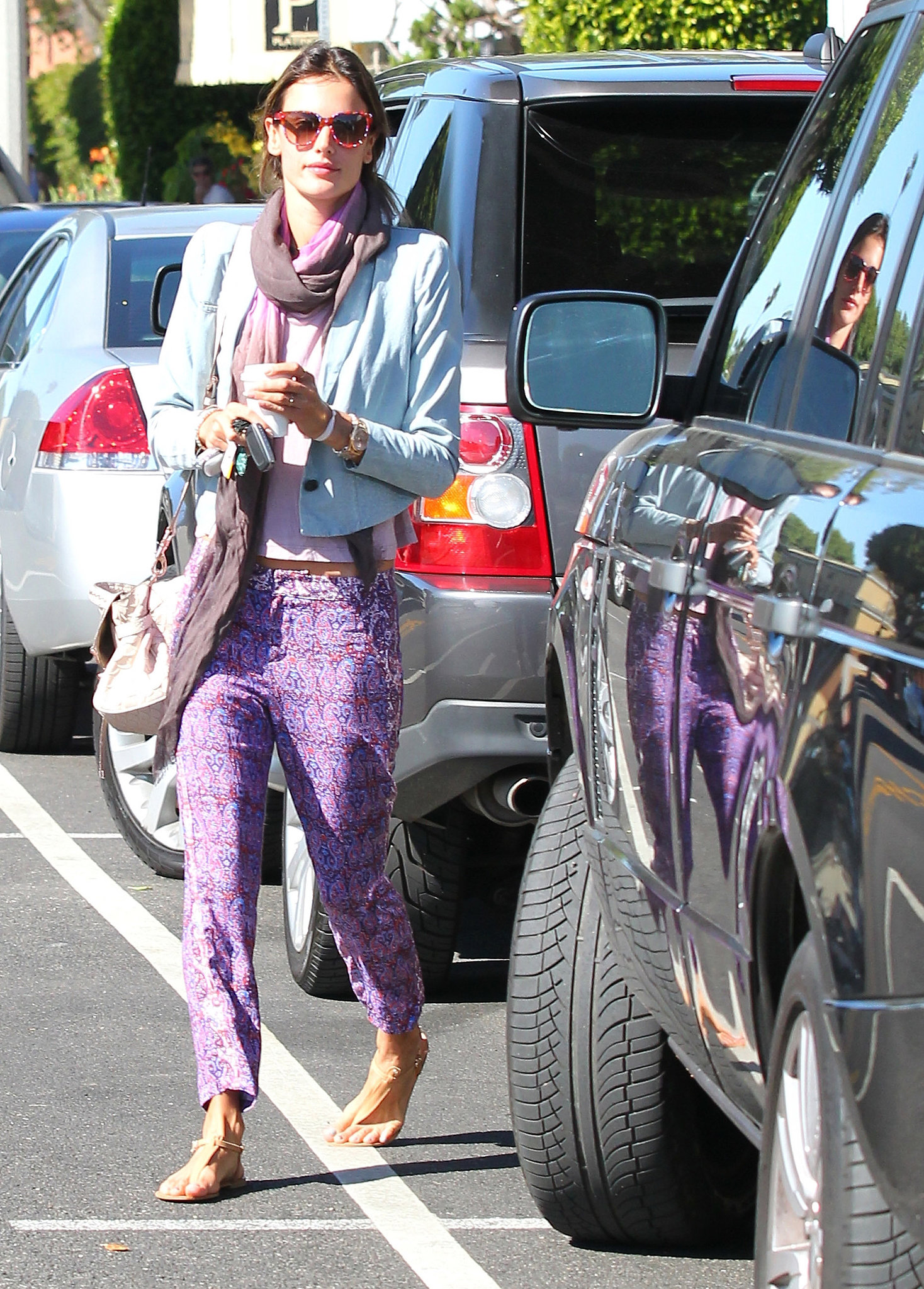 Alessandra Ambrosio doused herself in color in purple printed Ella