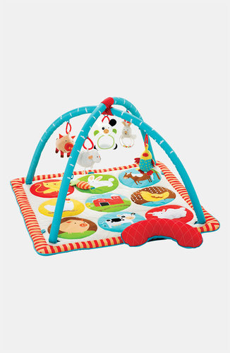 Skip Hop 'Funky Farmyard' Activity Gym