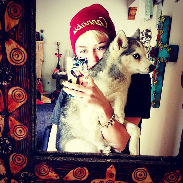 Miley Cyrus took a selfie with one of her many pups in May 2013. Source: Instagram user mileycyrus