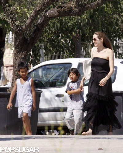During a stay in France in August 2009, Angelina Jolie took her boys to a pet shop to buy gerbils and goldfish.