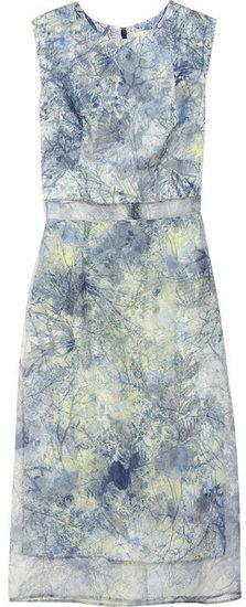 Erdem Helena printed silk-organza dress
