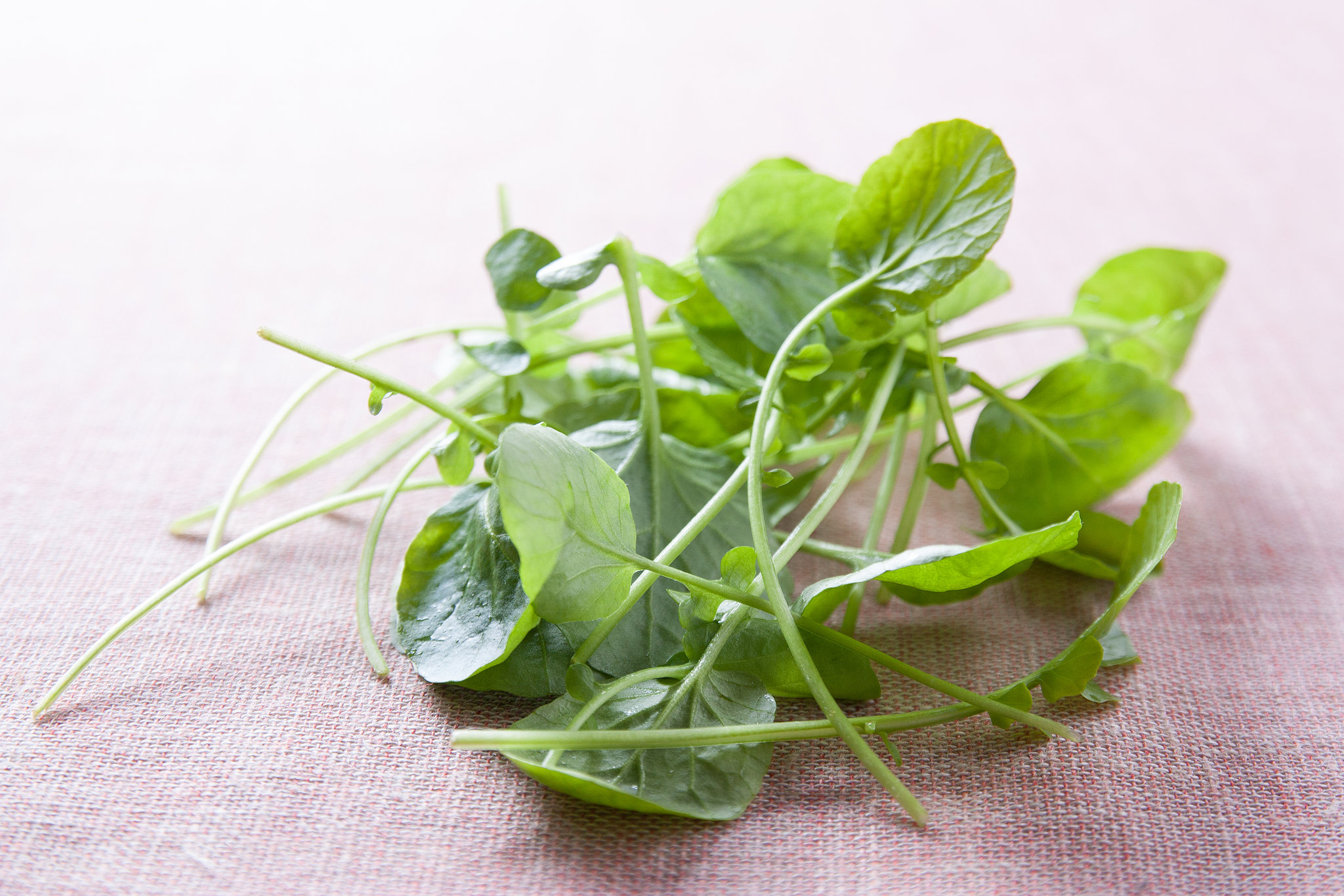 What Is Your Favorite Way to Eat Watercress?