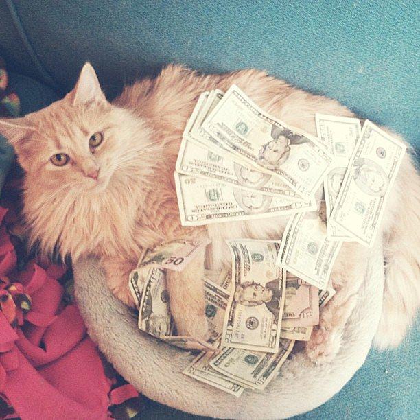 """Money blanket? Check. Time for my nap.""  Source: Instagram user juliebird123"