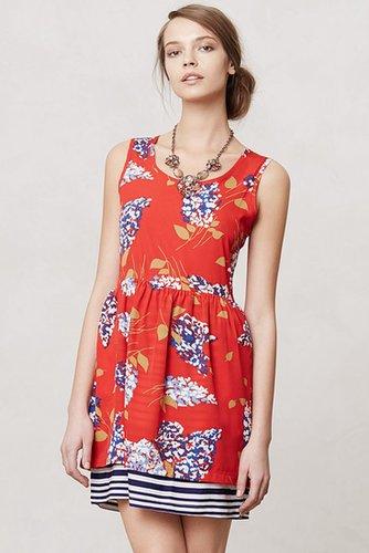 Petaluma Peep Hem Dress