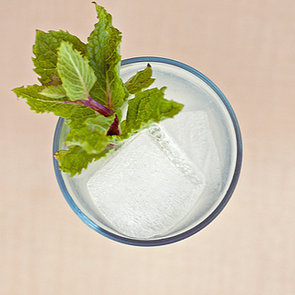 Mojito Recipe 2011-08-26 12:20:04
