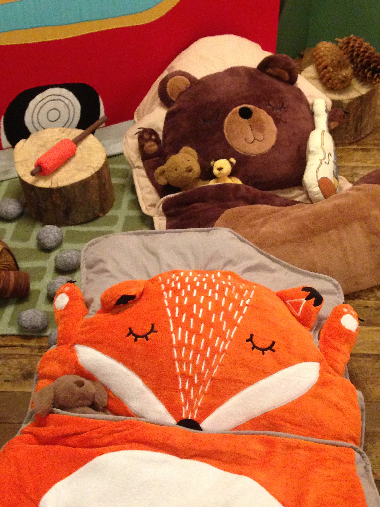 Cushy fox and teddy bear sleeping bags make slumber parties even more fun.