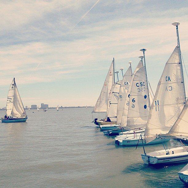 Sail the Bay