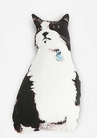 Diego the Cat Pillow