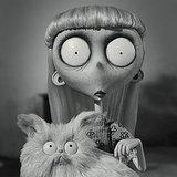 Cat Lady GIFs