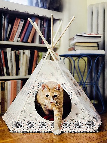 the pet version of glamping this free people printed cat tipi 88 best in show the. Black Bedroom Furniture Sets. Home Design Ideas