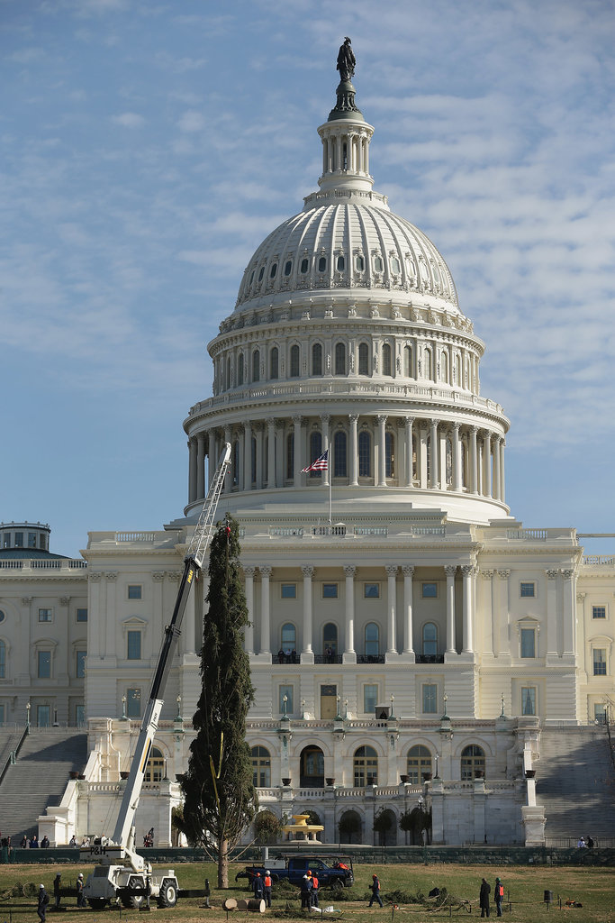 Workers installed the National Christmas Tree outside the Capitol.