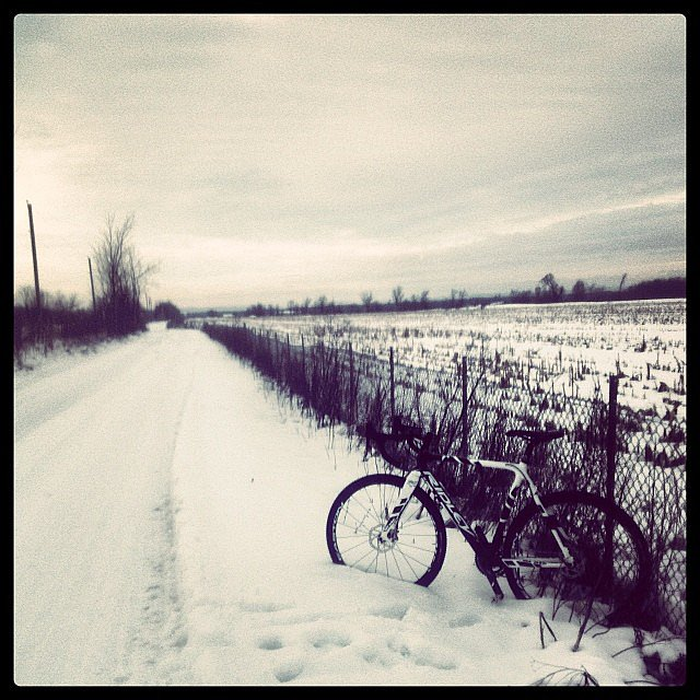 Wintery White Landscapes