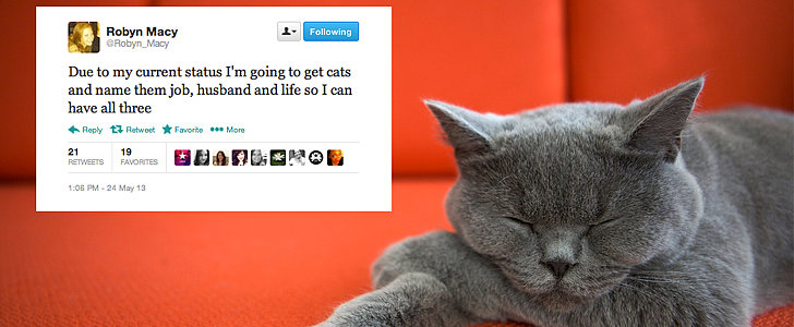 Cat-Lady Love: The Year's Funniest Feline Tweets