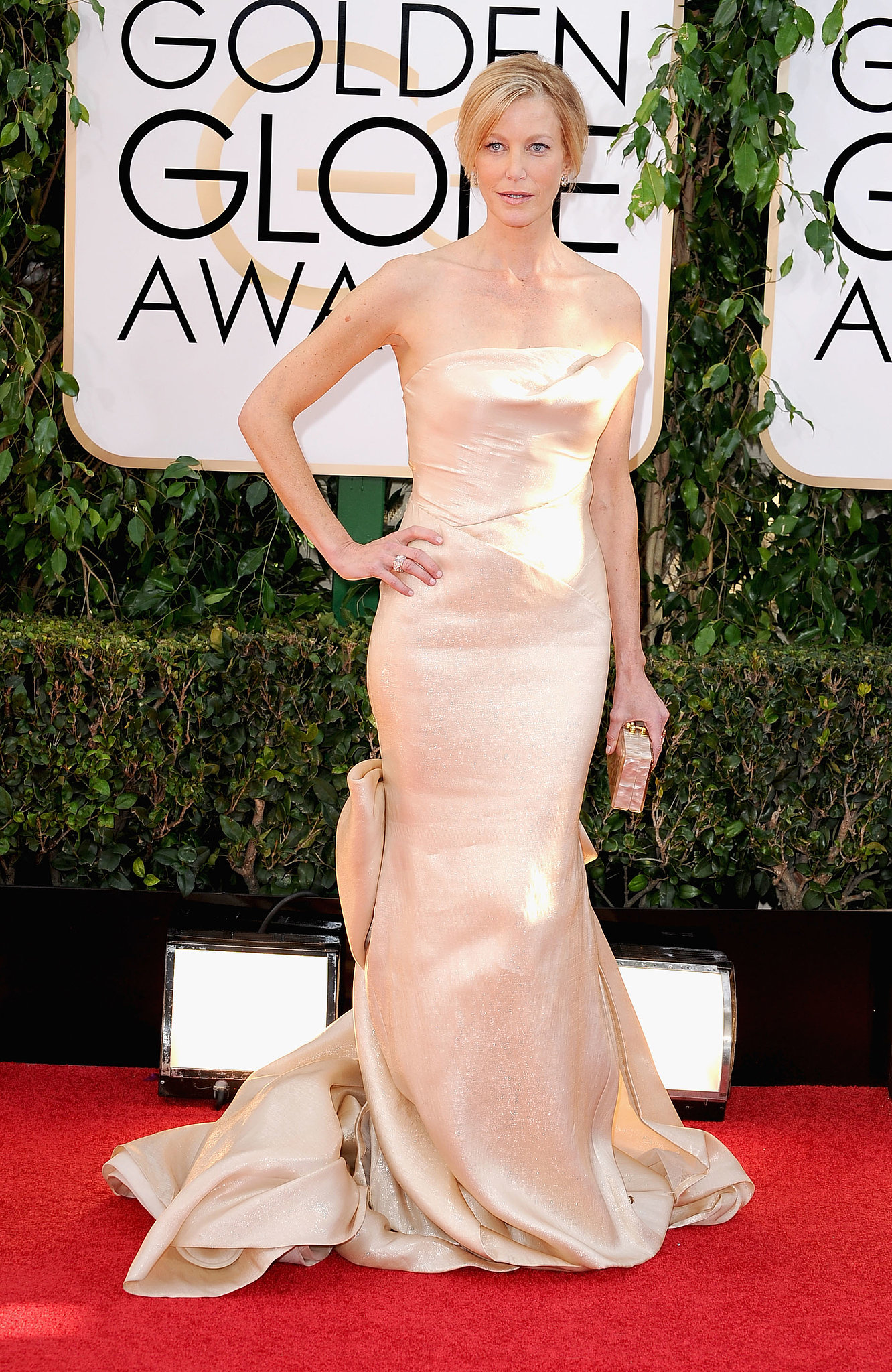 Breaking Bad star Anna Gunn walked the red carpet.