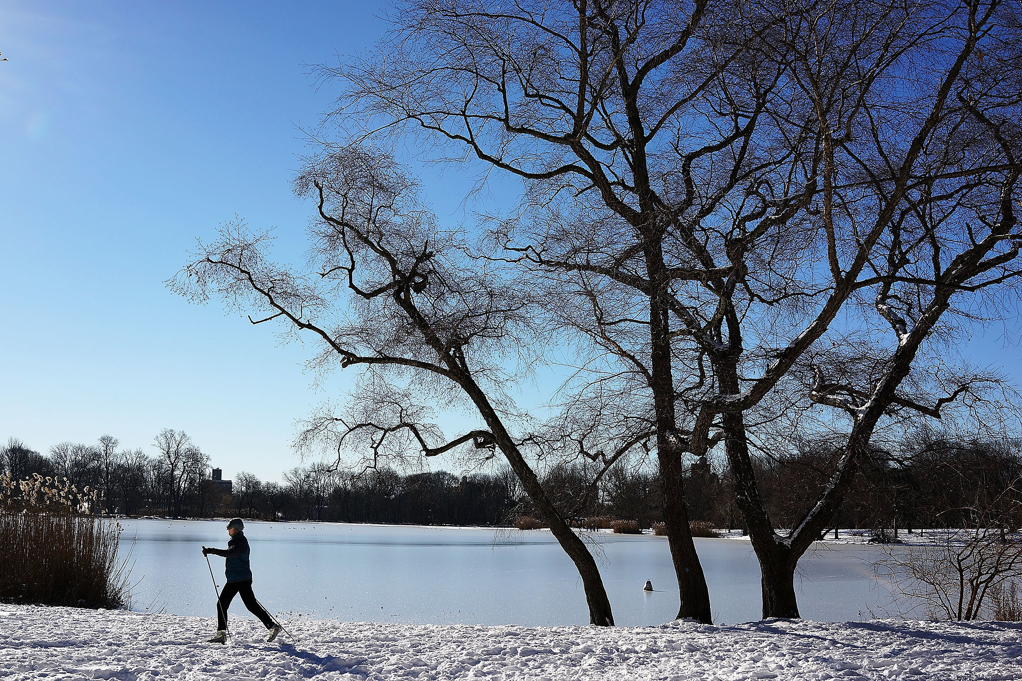 A woman skied her way through Brooklyn's Prospect Park in NYC.