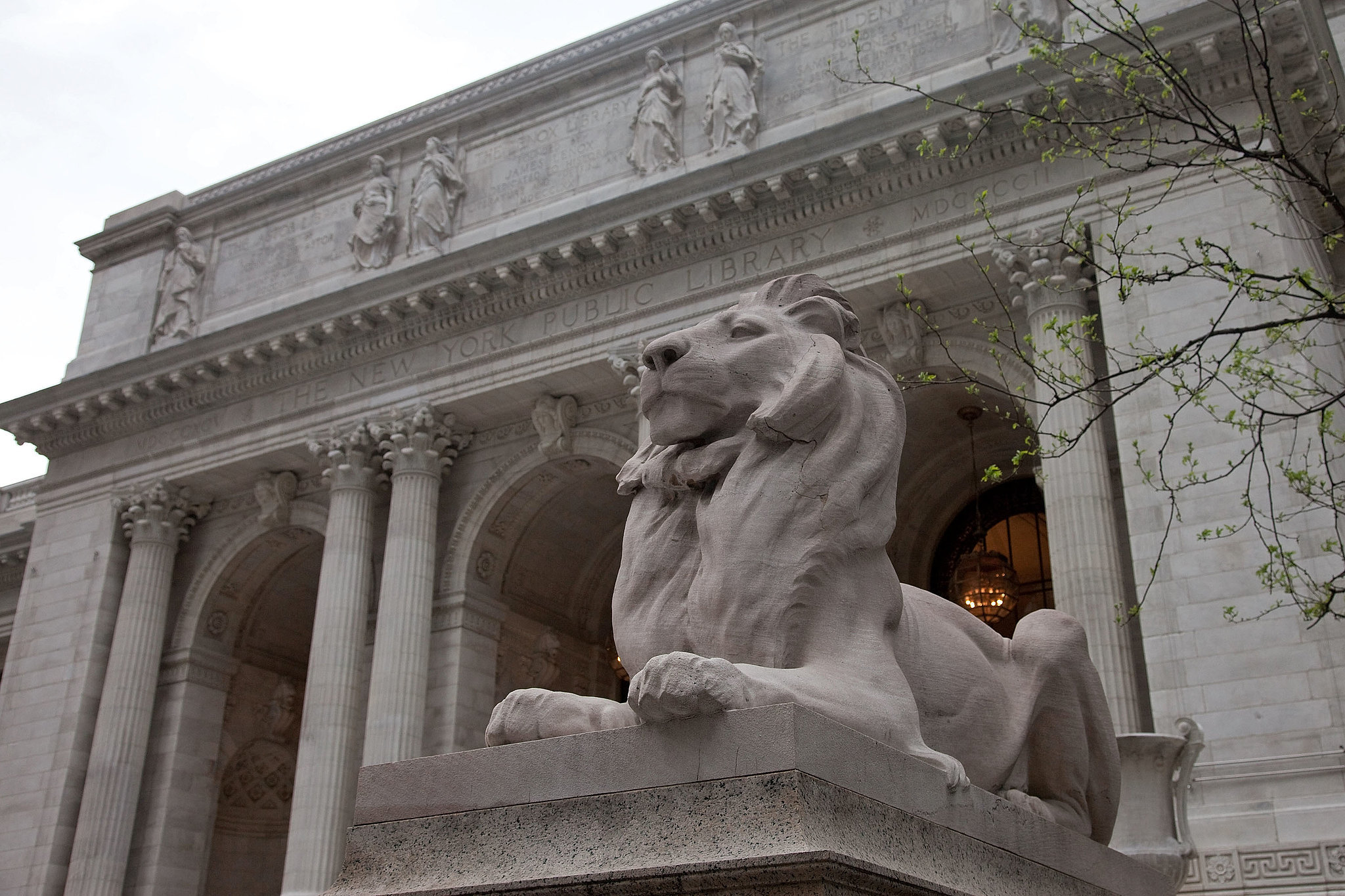 """""""The New York Public Library — it is so elegant and elaborate."""" —Charlotte Ronson """"Center 548 in Chelsea. Beautiful white gallery space with sun coming through the windows. I love a raw space, so the collection can really take center stage."""" —Rebecca Taylor"""
