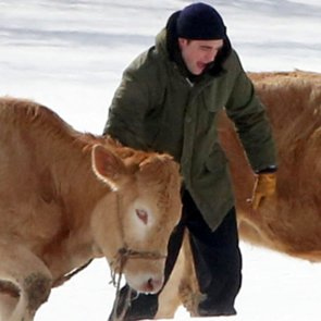 Robert Pattinson Herding Cattle on Set of Life in Vancouver