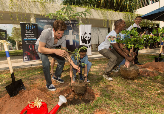 Andrew Garfield Planting Trees With Kids Will Make You Weak in the Knees
