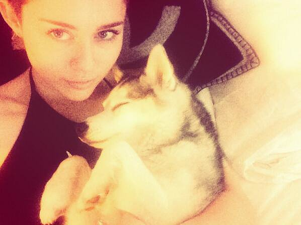 Miley shared snaps of herself with Floyd. Source: Twitter user MileyCyrus