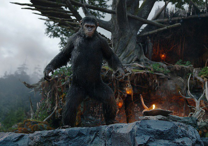 The movie takes place about a decade after the events of 2011's Rise of the Planet of the Apes.