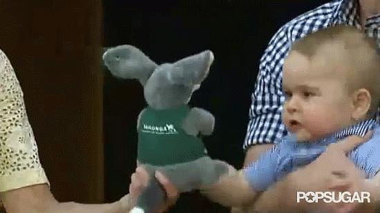 When Kate Handed Him a Stuffed Animal
