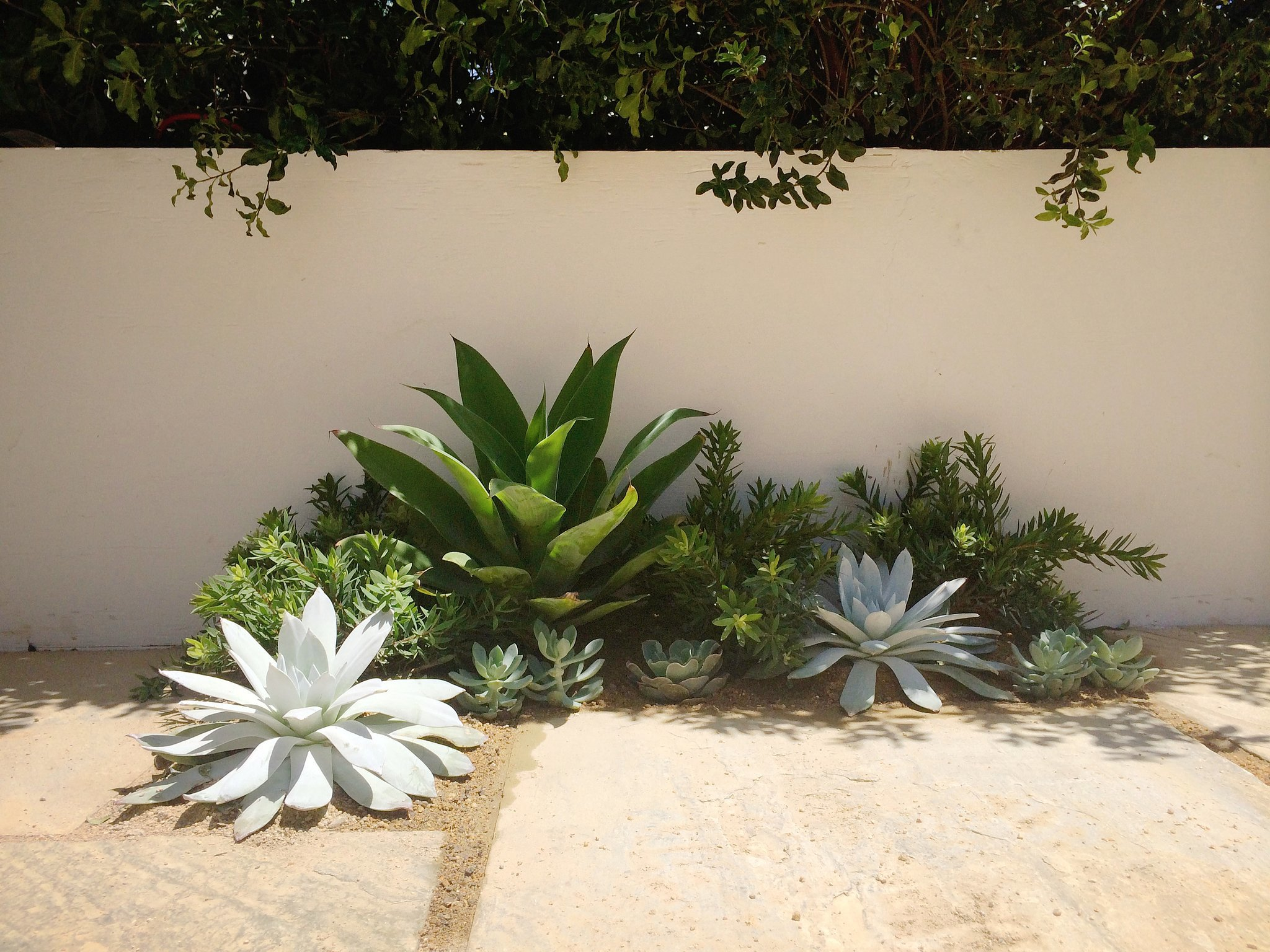 Ditch the Planters