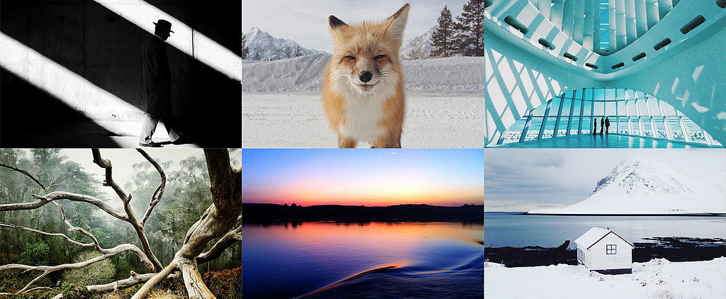 Would You Believe These Incredible Photos Were Taken on a Phone?