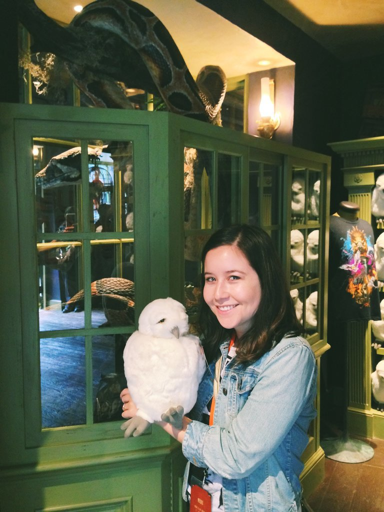 We all need a stuffed Hedwig in our life.