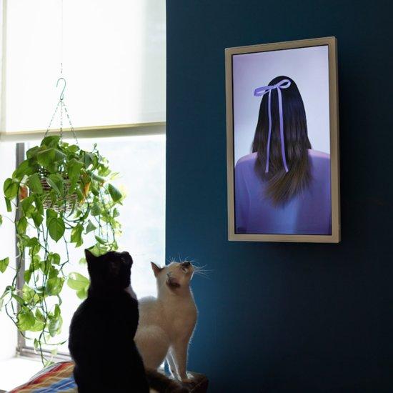 Computer Screen Only Displays Art