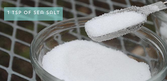 Measure 1 Teaspoon Sea Salt