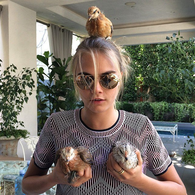 Cara put a bird — make that chicken — on it.  Source: Instagram user caradelevingne