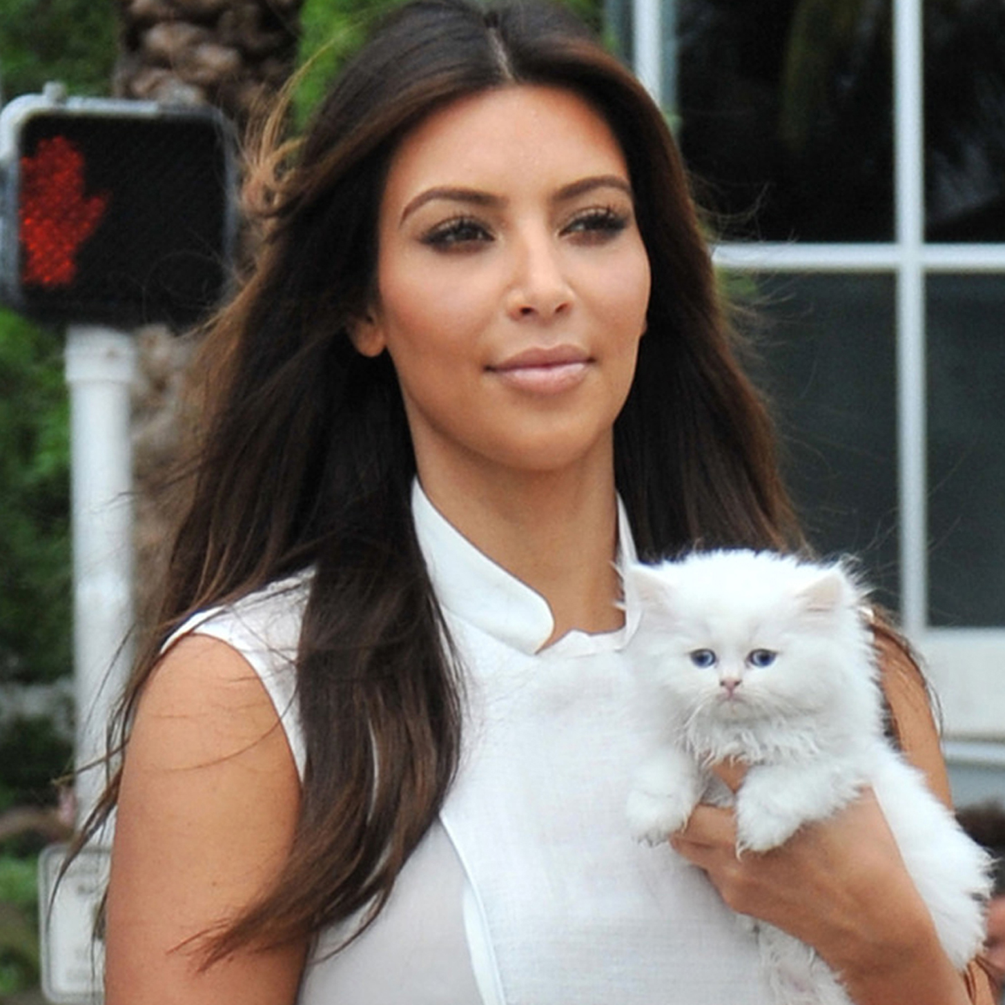Check out these celebs and their fine and fierce feline friends who