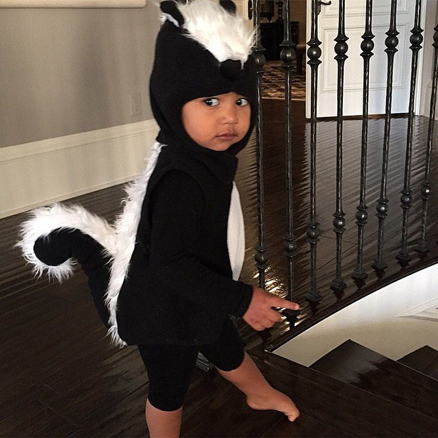 North wore a skunk costume for Halloween in 2014.