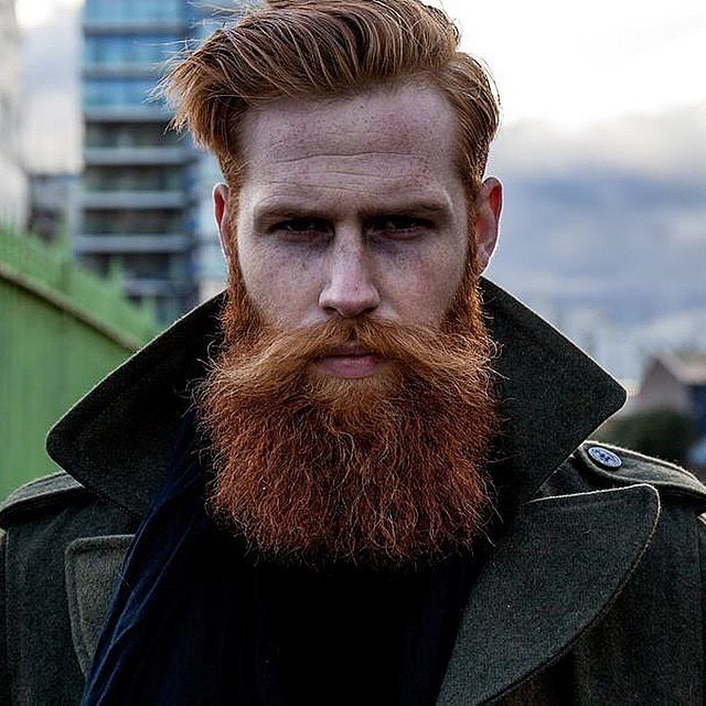 Ginger Beard | 13 Beards You'll Wish Your Boyfriend Had
