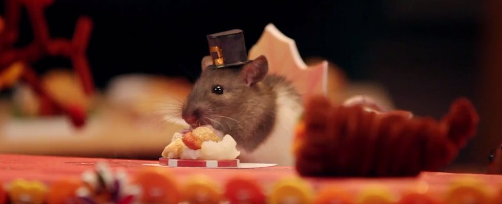 Watch Tiny Hamsters and Their Friends Enjoy a Mini Thanksgiving Dinner