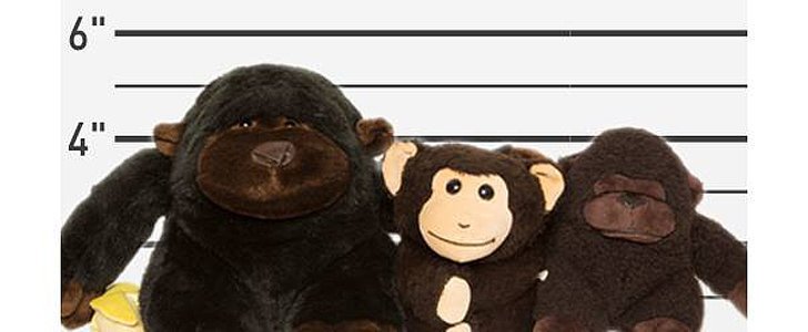 """Teddy Rescue"" Reunites Children With Lost Stuffed Animals"