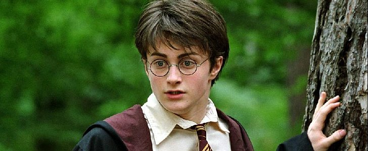 Harry Potter Fan Theories So Crazy, They Just Might Be True