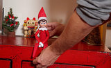 Frank the Cat Vs. The Elf on the Shelf: Day One, the Arrival