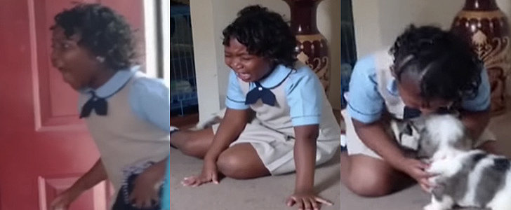 This Little Girl Had a Completely Appropriate Reaction to Getting a Puppy