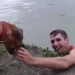 Dog Thinks Owner Is Drowning
