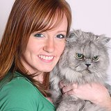 Silver Cats May Help Cure Cancer for Humans With Red Hair