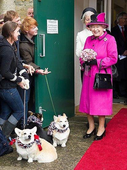 Queen Elizabeth II Rules No More Corgis