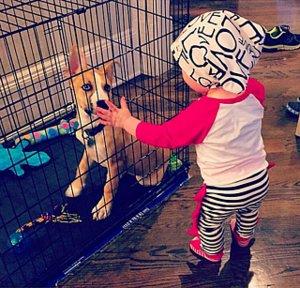 Kim Zolciak's Son Kane Is In Puppy Love!